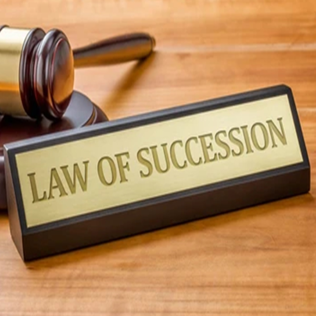 What is Succession Law